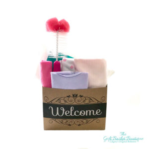 Welcome Newborn Baby Girl Gift Basket