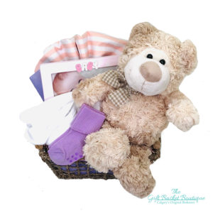 Baby Buddy Gift Basket Calgary Girl